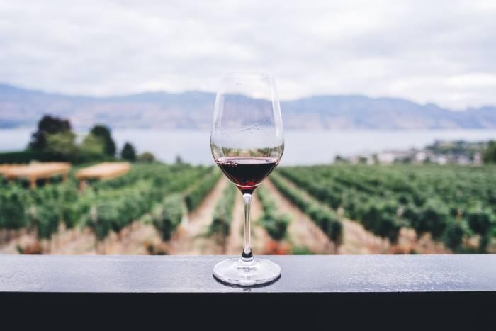 Viinitilaelämys - Viinitilakierros, viinimaistiaiset ja ruokailu