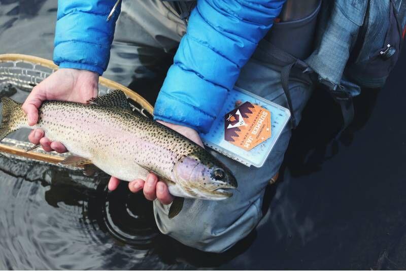 Yhden päivän opastettu kalastusretki