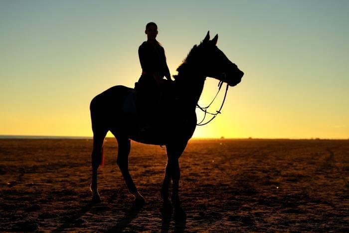 Kuutamo ja revontuliretki-Yöretki hevosilla